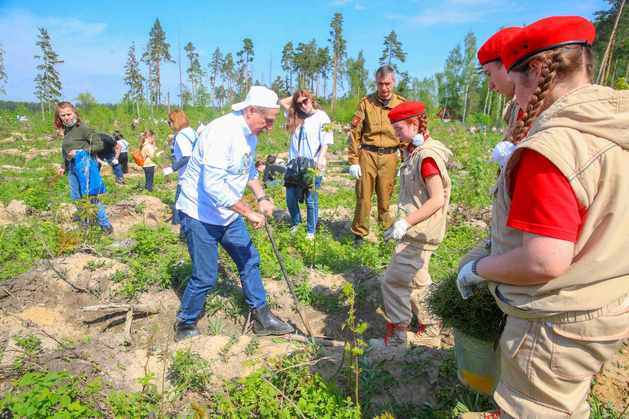 Жители городского округа Люберцы высадили более 17 тысяч деревьев